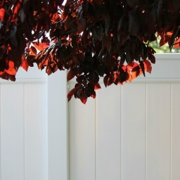 Bright white vinyl privacy fence with dark red leaves hanging above.