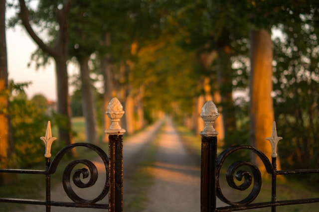 Wrought iron fence opening to a long driveway lined with trees.