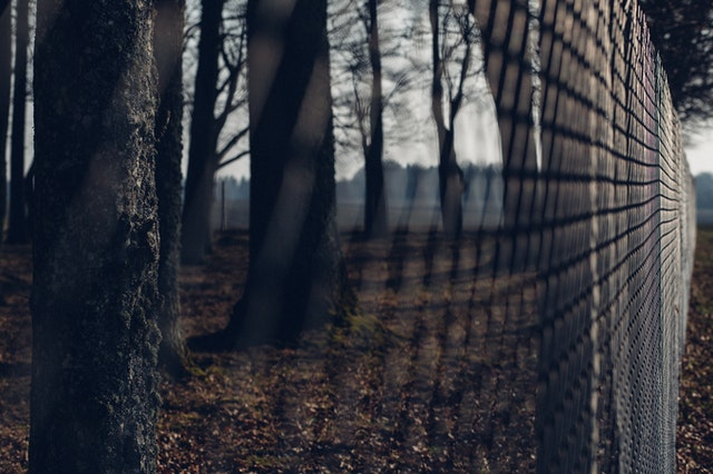 Wood Chain Link Fence, borders a wooded lot.
