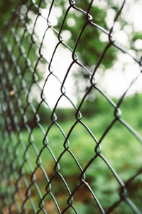Metal chain link fence with grass and trees in the background.